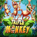 Triple Monkey PT