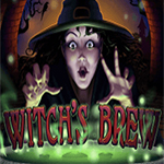 Witch`s Brew